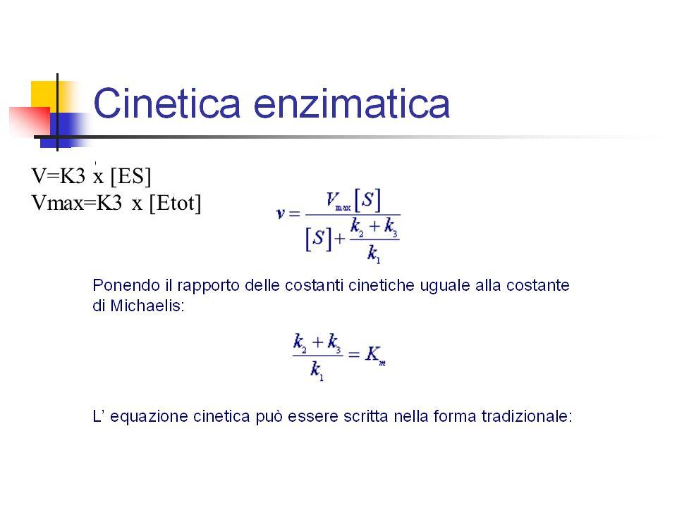V=K3 x [ES] Vmax=K3 x [Etot]