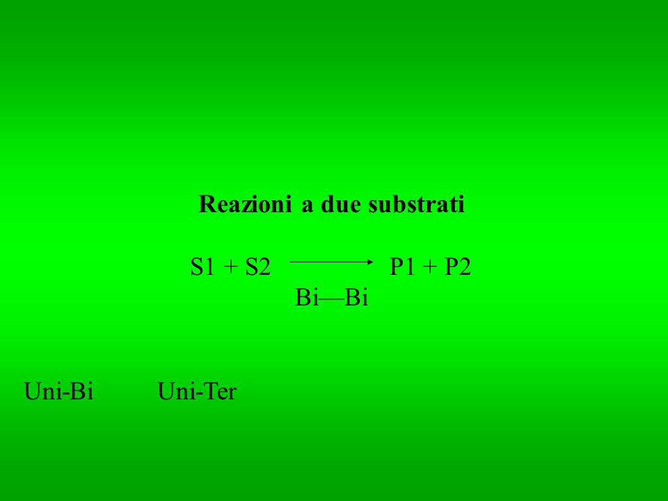 Reazioni a due substrati S1 + S2 P1 + P2 BiBi Uni-BiUni-Ter