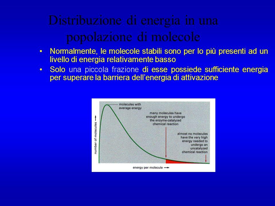 Distribuzione di energia in una popolazione di molecole Normalmente, le molecole stabili sono per lo più presenti ad un livello di energia relativamen