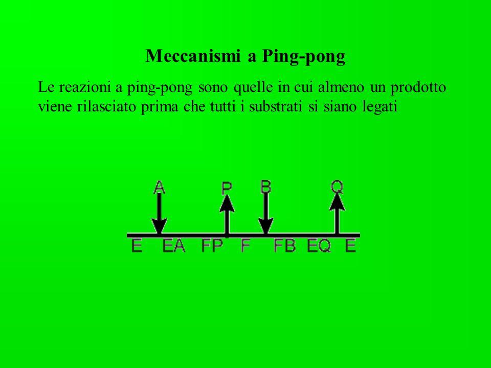 Meccanismi a Ping-pong Le reazioni a ping-pong sono quelle in cui almeno un prodotto viene rilasciato prima che tutti i substrati si siano legati