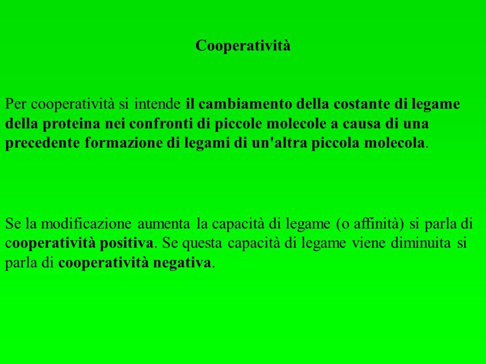Cooperatività Per cooperatività si intende il cambiamento della costante di legame della proteina nei confronti di piccole molecole a causa di una pre