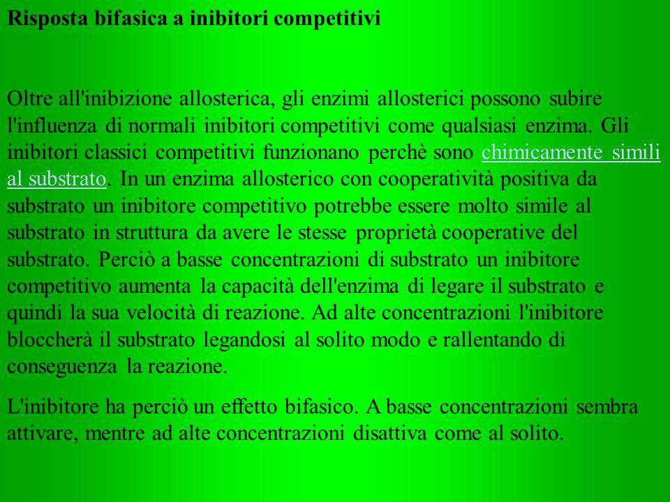 Risposta bifasica a inibitori competitivi Oltre all'inibizione allosterica, gli enzimi allosterici possono subire l'influenza di normali inibitori com