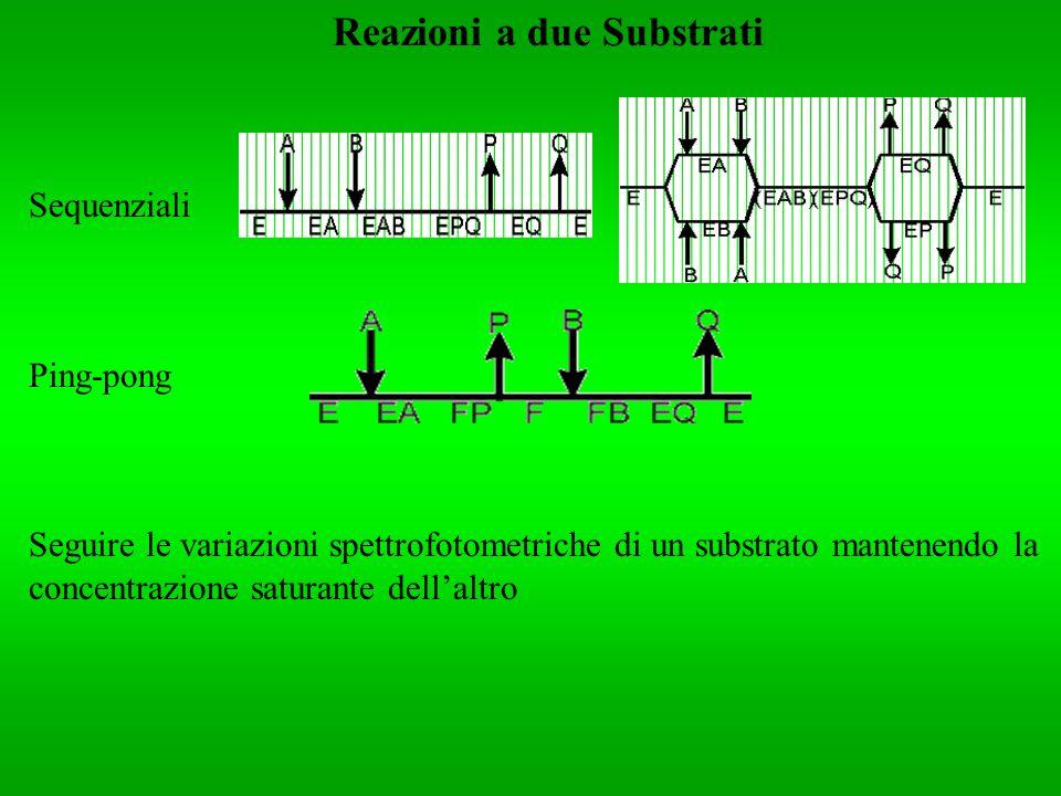 Reazioni a due Substrati Sequenziali Ping-pong Seguire le variazioni spettrofotometriche di un substrato mantenendo la concentrazione saturante dellal