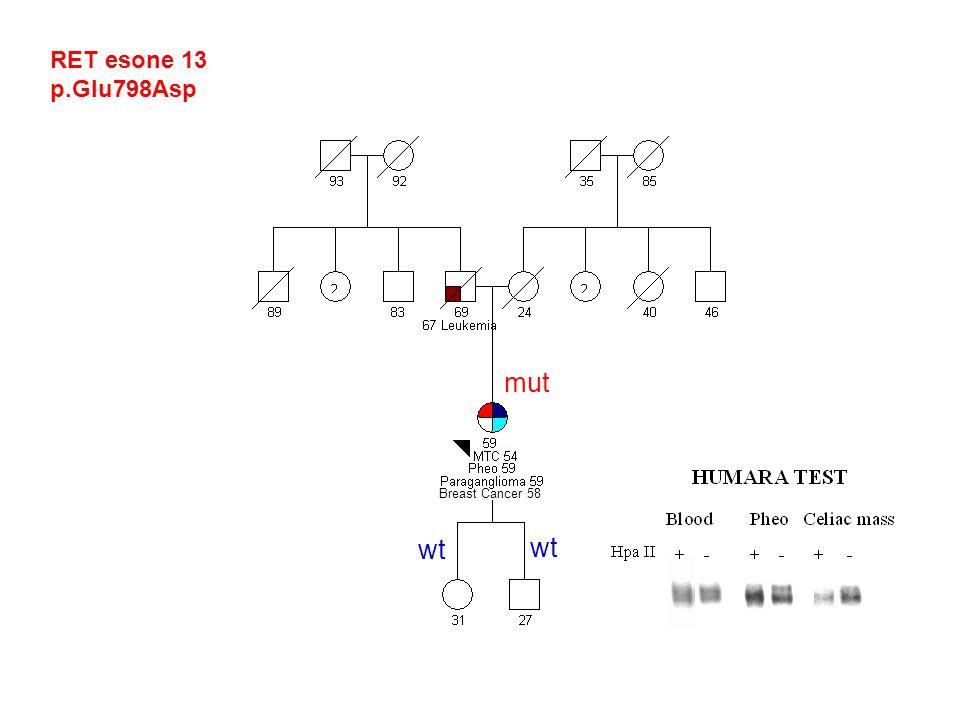 RET esone 13 p.Glu798Asp Breast Cancer 58 mut wt