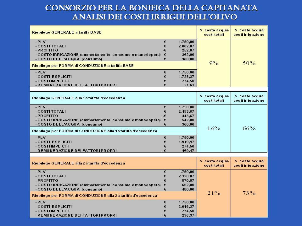Consorzio per la Bonifica della Capitanata analisi dei costi irrigui dellolivo