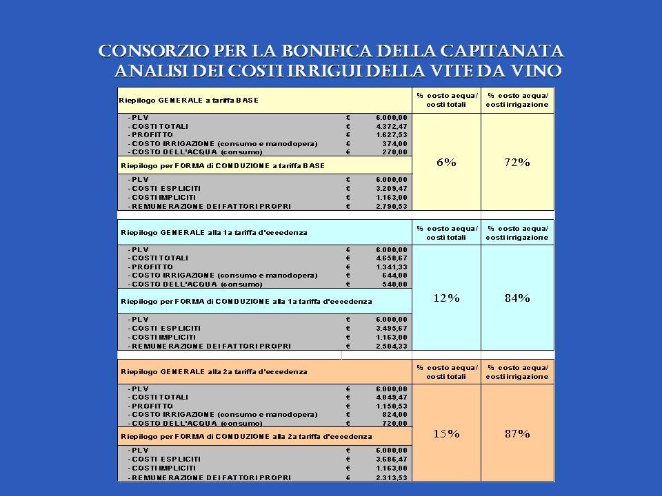 Consorzio per la Bonifica della Capitanata analisi dei costi irrigui della vite da vino