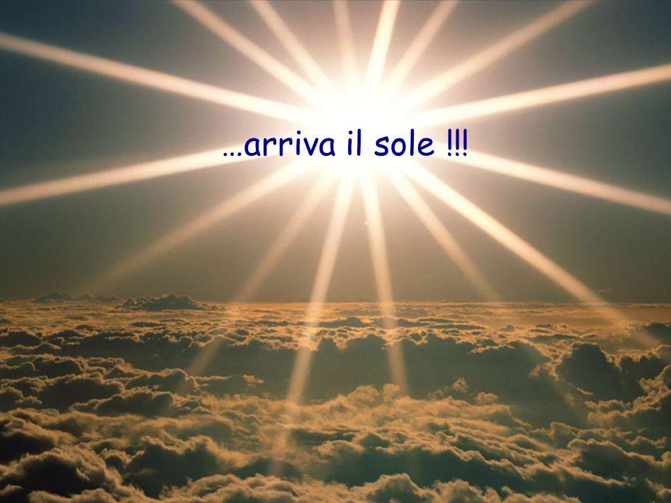 E con il sole… …la voglia di stare insieme