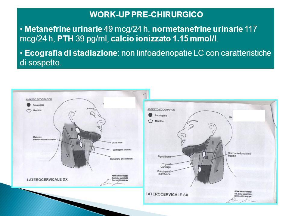 WORK-UP PRE-CHIRURGICO Metanefrine urinarie 49 mcg/24 h, normetanefrine urinarie 117 mcg/24 h, PTH 39 pg/ml, calcio ionizzato 1.15 mmol/l. Ecografia d