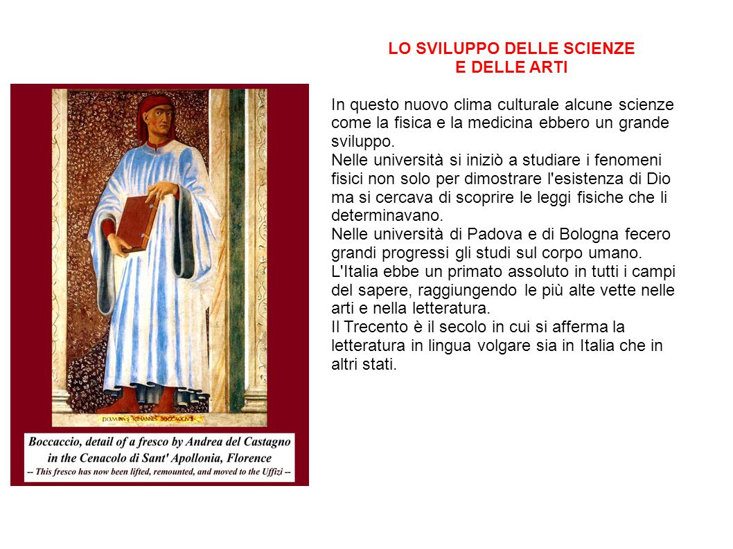 LO SVILUPPO DELLE SCIENZE E DELLE ARTI In questo nuovo clima culturale alcune scienze come la fisica e la medicina ebbero un grande sviluppo.