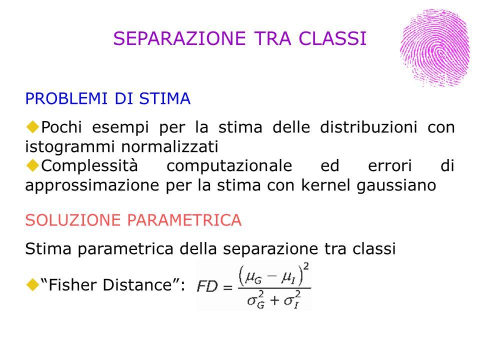 PROBLEMI DI STIMA Pochi esempi per la stima delle distribuzioni con istogrammi normalizzati Complessità computazionale ed errori di approssimazione pe