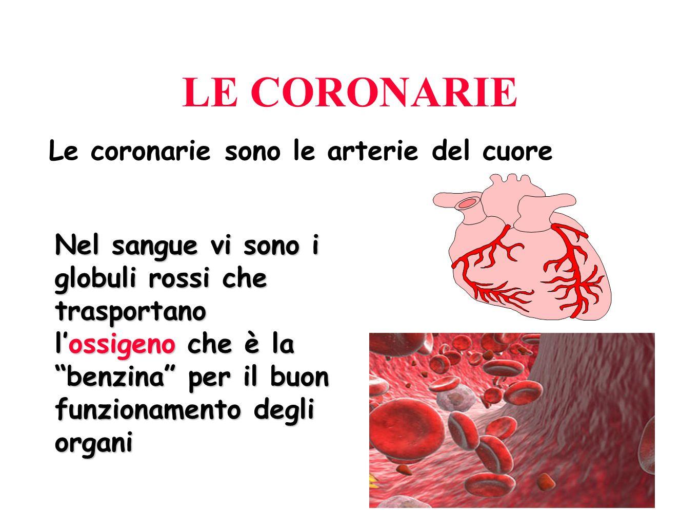 107 IL DOLORE TORACICO Origine Apparato cardiovascolare Apparato digerente Apparato respiratorio Apparato muscolo-scheletrico