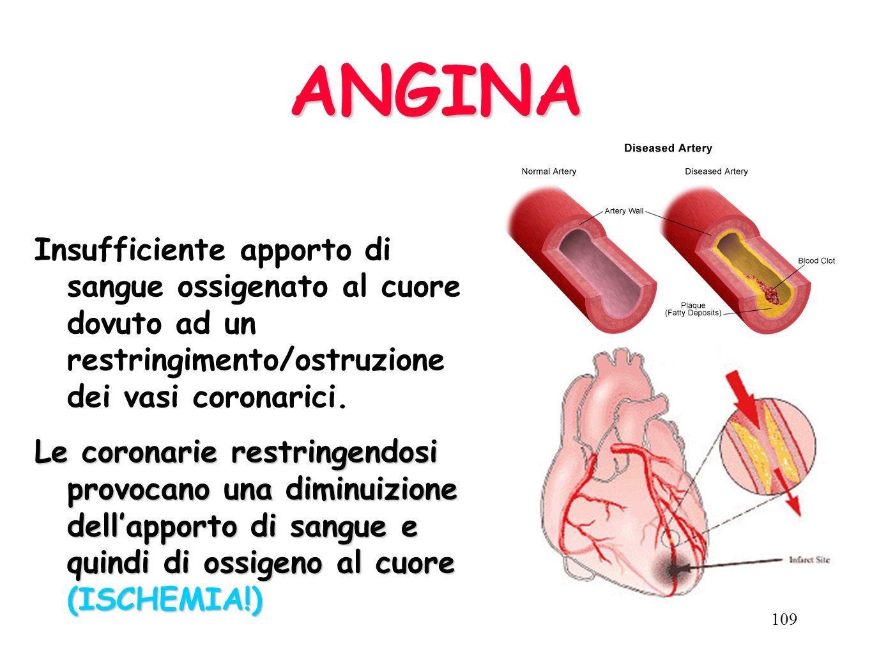LE CORONARIE Le coronarie sono le arterie del cuore Nel sangue vi sono i globuli rossi che trasportano lossigeno che è la benzina per il buon funziona