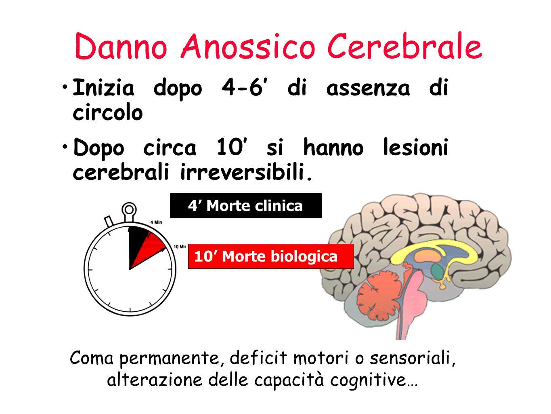 Danno Anossico Cerebrale Inizia dopo 4-6 di assenza di circolo Dopo circa 10 si hanno lesioni cerebrali irreversibili.