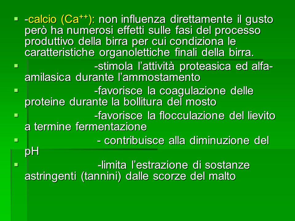 -calcio (Ca ++ ): non influenza direttamente il gusto però ha numerosi effetti sulle fasi del processo produttivo della birra per cui condiziona le ca