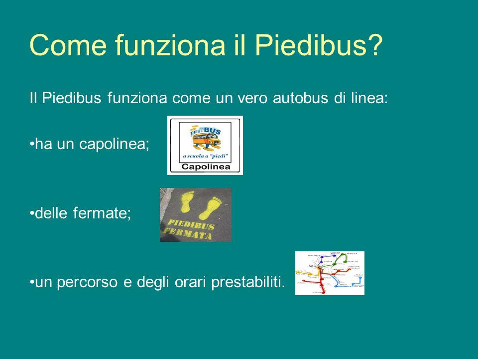 Come funziona il Piedibus? Il Piedibus funziona come un vero autobus di linea: ha un capolinea; delle fermate; un percorso e degli orari prestabiliti.
