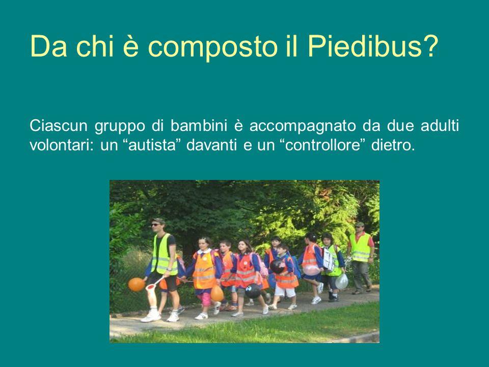 Da chi è composto il Piedibus? Ciascun gruppo di bambini è accompagnato da due adulti volontari: un autista davanti e un controllore dietro.