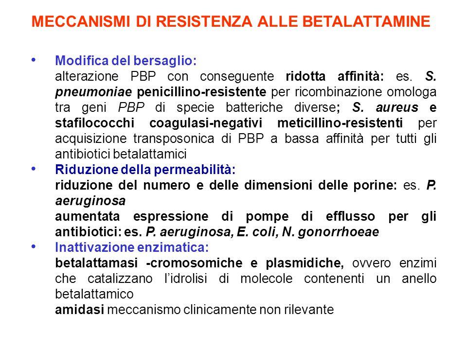 MECCANISMI DI RESISTENZA ALLE BETALATTAMINE Modifica del bersaglio: alterazione PBP con conseguente ridotta affinità: es. S. pneumoniae penicillino-re