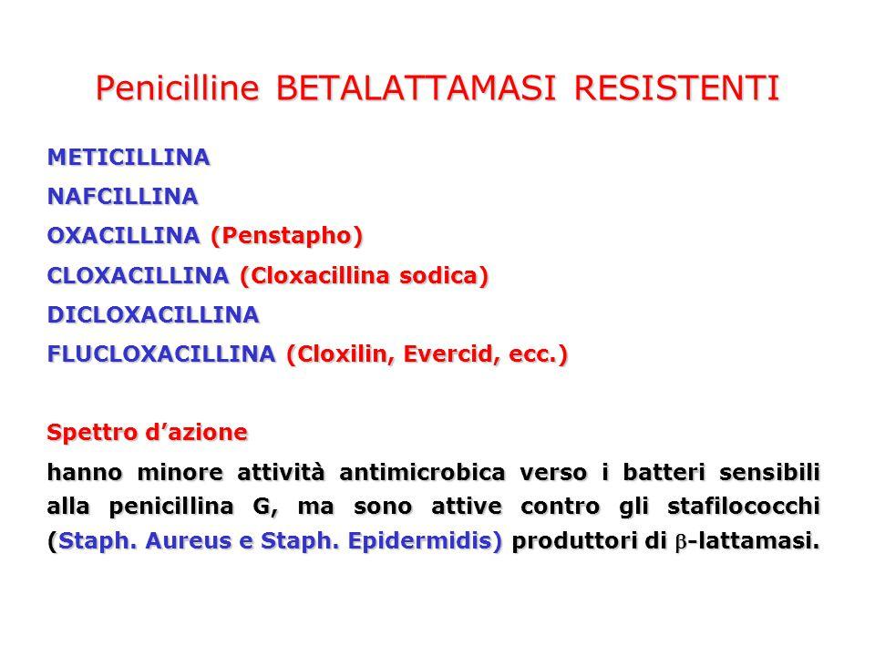 METICILLINANAFCILLINA OXACILLINA (Penstapho) CLOXACILLINA (Cloxacillina sodica) DICLOXACILLINA FLUCLOXACILLINA (Cloxilin, Evercid, ecc.) Spettro dazio
