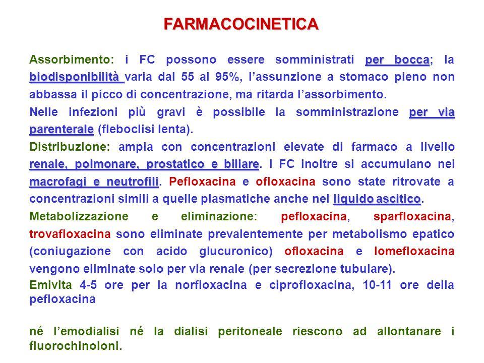 FARMACOCINETICA per bocca biodisponibilità Assorbimento: i FC possono essere somministrati per bocca; la biodisponibilità varia dal 55 al 95%, lassunz