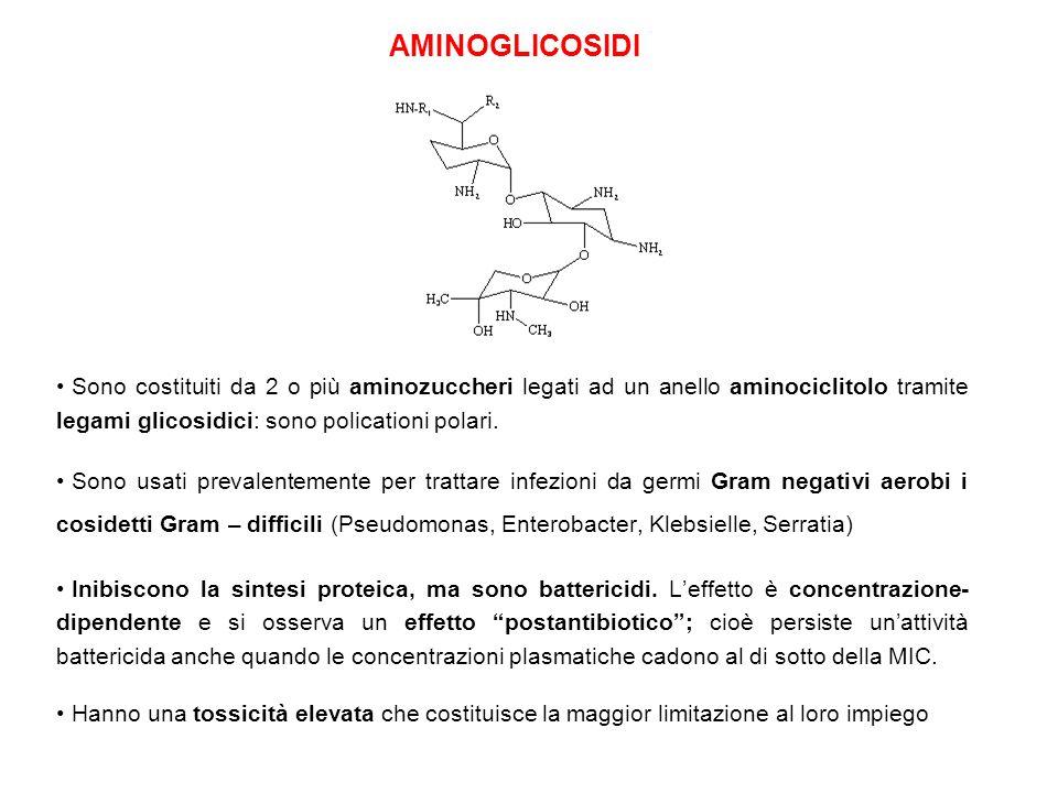 Sono costituiti da 2 o più aminozuccheri legati ad un anello aminociclitolo tramite legami glicosidici: sono policationi polari. Sono usati prevalente