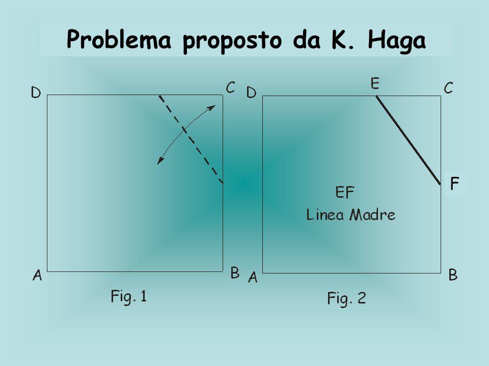 Problema proposto da K. Haga F