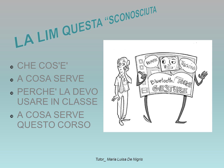 CHE COS E A COSA SERVE PERCHE LA DEVO USARE IN CLASSE A COSA SERVE QUESTO CORSO Tutor_ Maria Luisa De Nigris