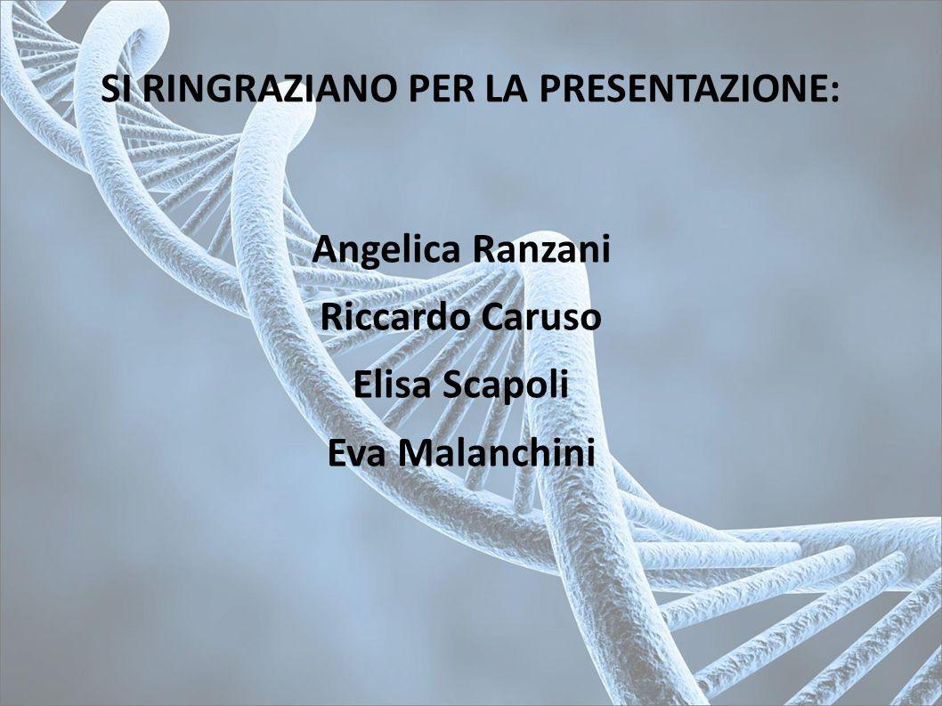 SI RINGRAZIANO PER LA PRESENTAZIONE: Angelica Ranzani Riccardo Caruso Elisa Scapoli Eva Malanchini