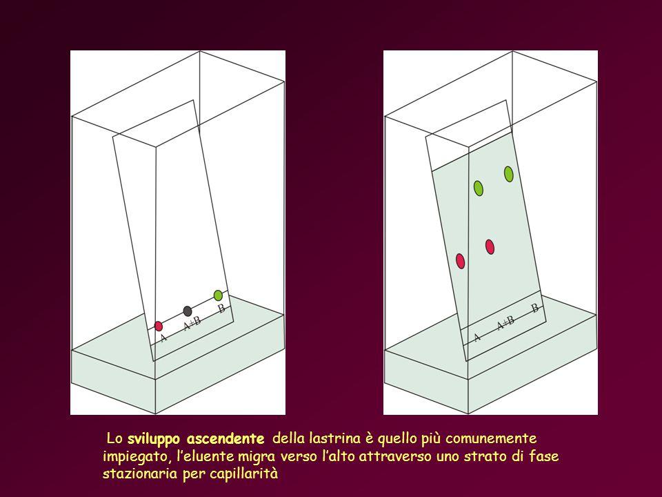 Lo sviluppo ascendente della lastrina è quello più comunemente impiegato, leluente migra verso lalto attraverso uno strato di fase stazionaria per capillarità