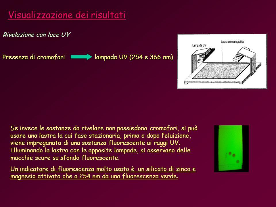 Rivelazione con luce UV Presenza di cromofori lampada UV (254 e 366 nm) Se invece le sostanze da rivelare non possiedono cromofori, si può usare una lastra la cui fase stazionaria, prima o dopo leluizione, viene impreganata di una sostanza fluorescente ai raggi UV.