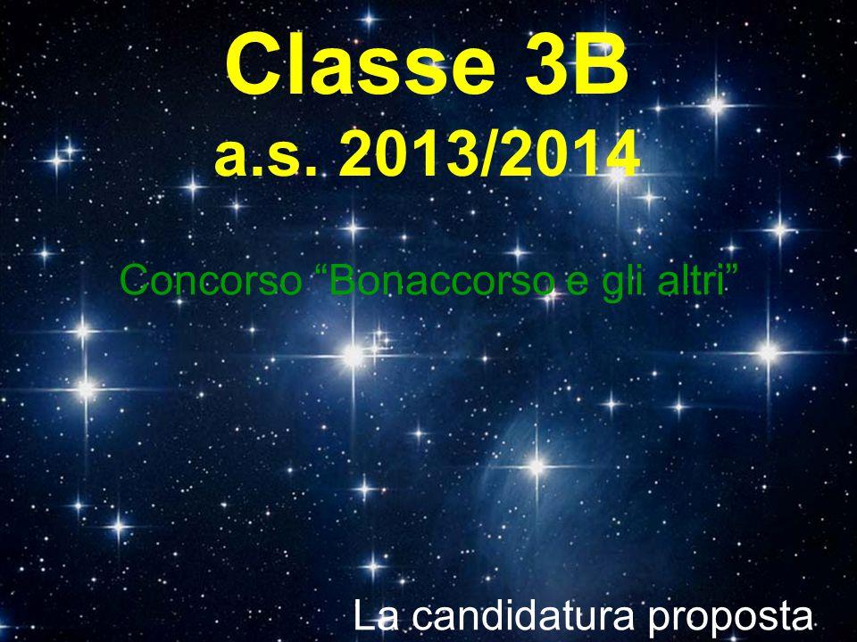 Classe 3B a.s. 2013/2014 Concorso Bonaccorso e gli altri La candidatura proposta è…