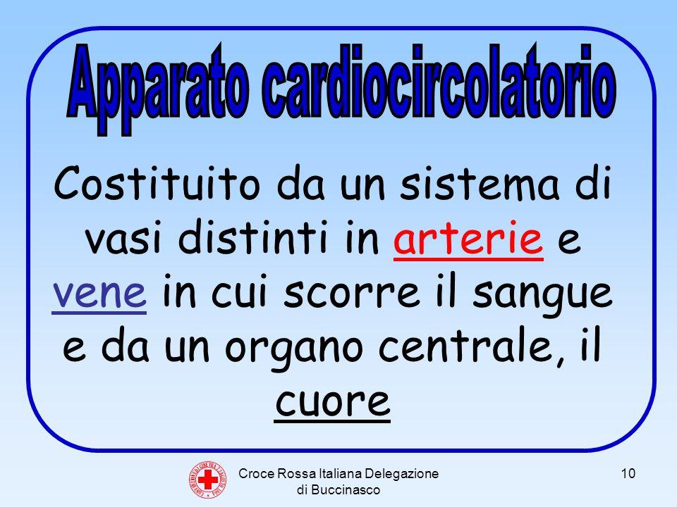 Croce Rossa Italiana Delegazione di Buccinasco 10 C O N V E N Z I O N E D I G I N E V R A 2 2 A G O S T O 1 8 6 4 Costituito da un sistema di vasi distinti in arterie e vene in cui scorre il sangue e da un organo centrale, il cuore
