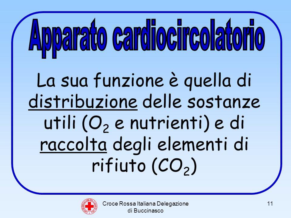 Croce Rossa Italiana Delegazione di Buccinasco 11 C O N V E N Z I O N E D I G I N E V R A 2 2 A G O S T O 1 8 6 4 La sua funzione è quella di distribuzione delle sostanze utili (O 2 e nutrienti) e di raccolta degli elementi di rifiuto (CO 2 )