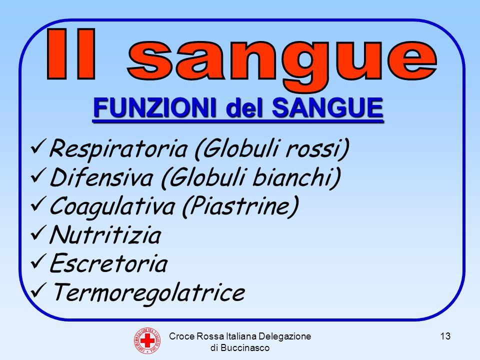 Croce Rossa Italiana Delegazione di Buccinasco 13 C O N V E N Z I O N E D I G I N E V R A 2 2 A G O S T O 1 8 6 4 FUNZIONI del SANGUE Respiratoria (Globuli rossi) Difensiva (Globuli bianchi) Coagulativa (Piastrine) Nutritizia Escretoria Termoregolatrice