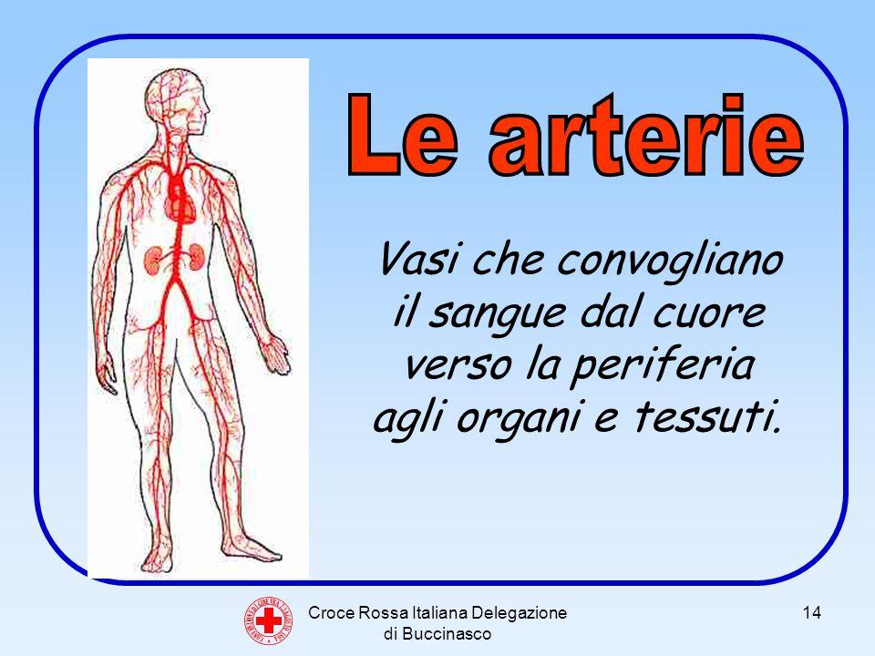 Croce Rossa Italiana Delegazione di Buccinasco 14 C O N V E N Z I O N E D I G I N E V R A 2 2 A G O S T O 1 8 6 4 Vasi che convogliano il sangue dal cuore verso la periferia agli organi e tessuti.