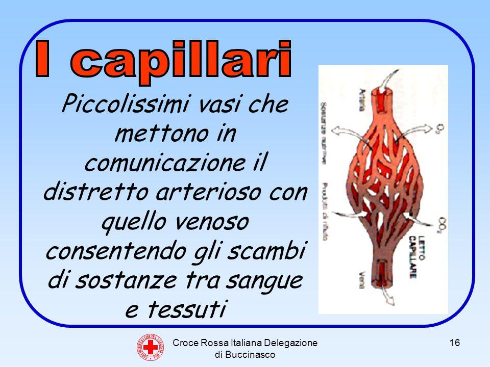 Croce Rossa Italiana Delegazione di Buccinasco 16 C O N V E N Z I O N E D I G I N E V R A 2 2 A G O S T O 1 8 6 4 Piccolissimi vasi che mettono in comunicazione il distretto arterioso con quello venoso consentendo gli scambi di sostanze tra sangue e tessuti