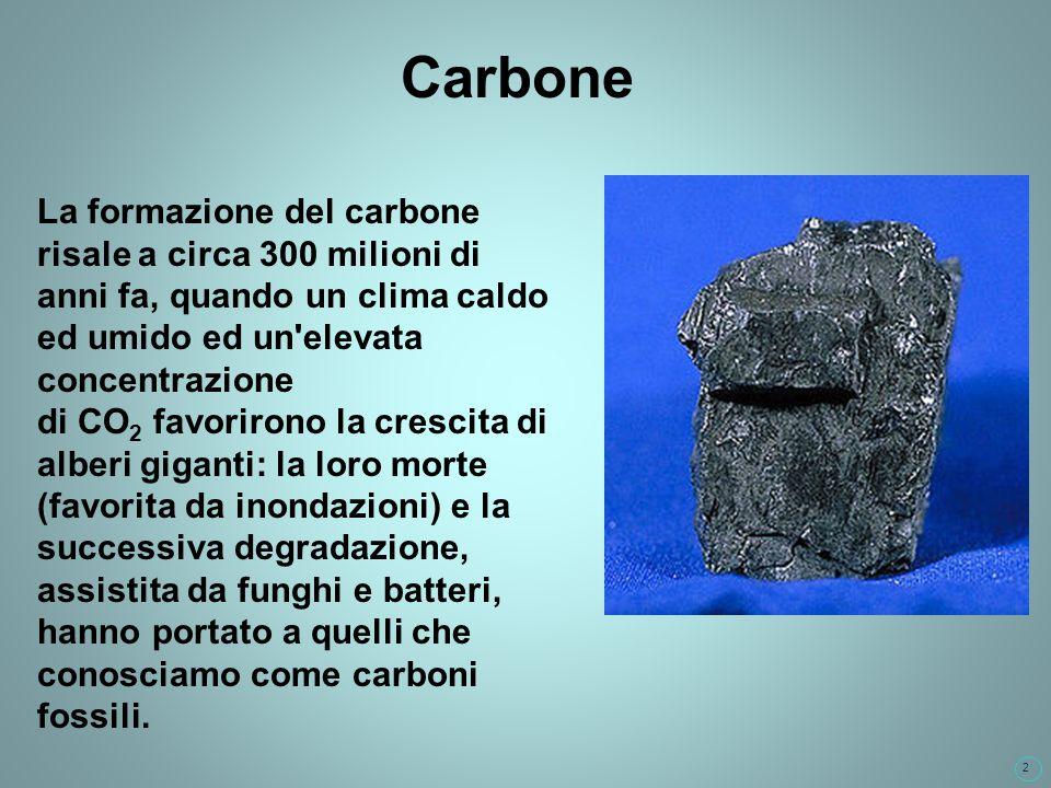 2 Carbone La formazione del carbone risale a circa 300 milioni di anni fa, quando un clima caldo ed umido ed un elevata concentrazione di CO 2 favorirono la crescita di alberi giganti: la loro morte (favorita da inondazioni) e la successiva degradazione, assistita da funghi e batteri, hanno portato a quelli che conosciamo come carboni fossili.
