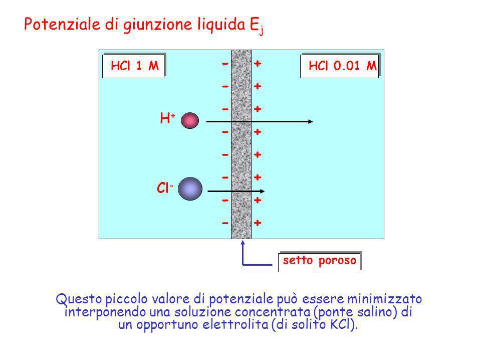 HCl 1 MHCl 0.01 M setto poroso H+H+ Cl - + + + + + + + + - - - - - - - - Potenziale di giunzione liquida E j Questo piccolo valore di potenziale può e