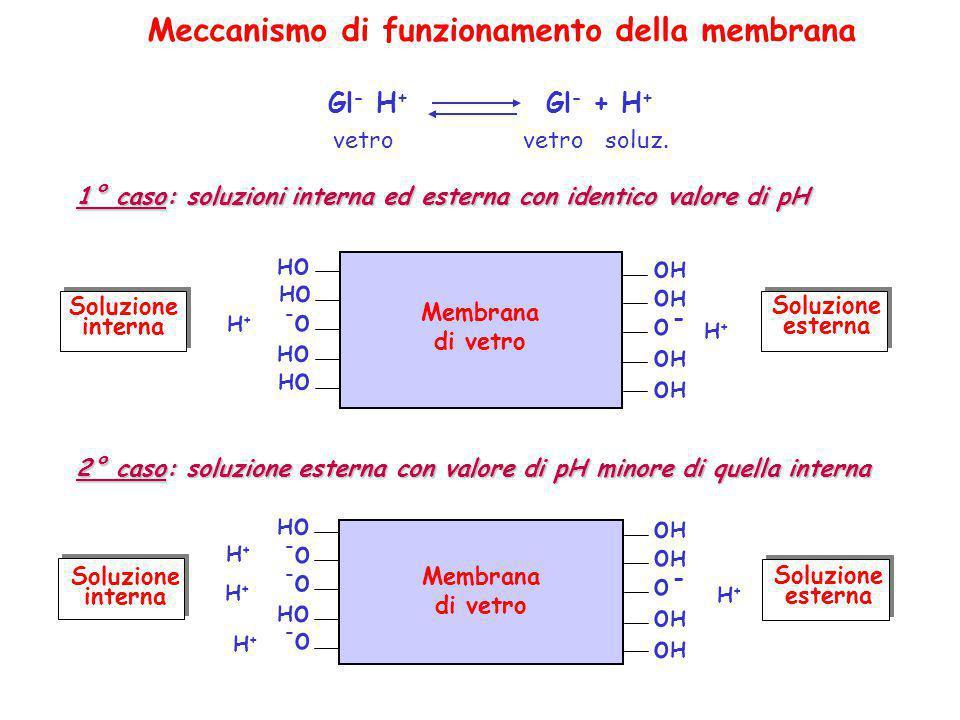 Meccanismo di funzionamento della membrana Gl - H + Gl - + H + vetro vetro soluz. 2° caso: soluzione esterna con valore di pH minore di quella interna