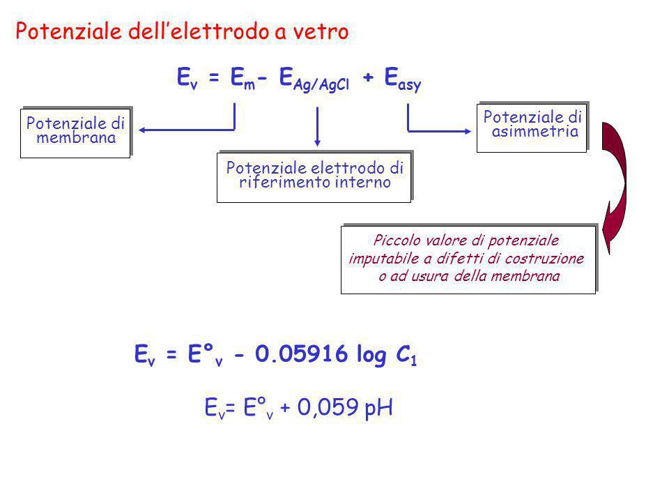 Potenziale dellelettrodo a vetro E v = E m - E Ag/AgCl + E asy E v = E° v - 0.05916 log C 1 Potenziale di asimmetria Potenziale di membrana Potenziale