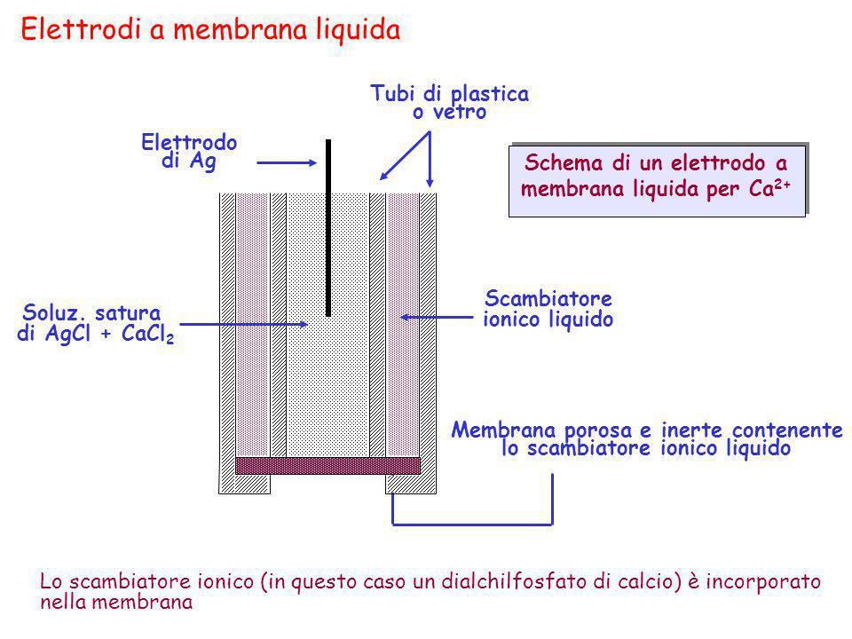 Elettrodi a membrana liquida Elettrodo di Ag Tubi di plastica o vetro Lo scambiatore ionico (in questo caso un dialchilfosfato di calcio) è incorporat