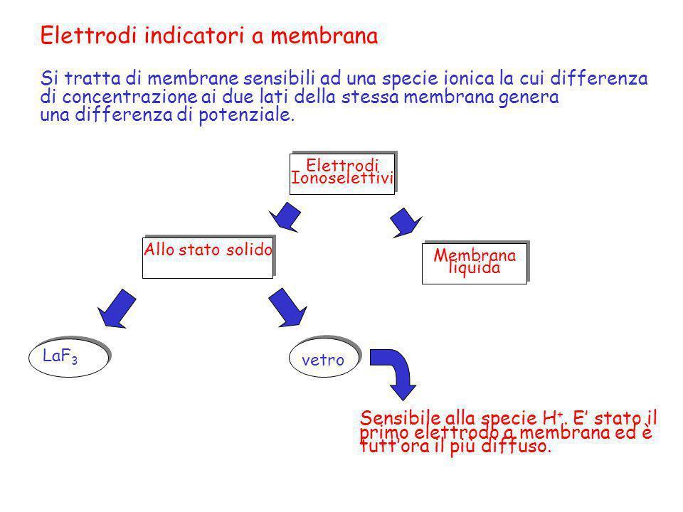 Elettrodi indicatori a membrana Si tratta di membrane sensibili ad una specie ionica la cui differenza di concentrazione ai due lati della stessa memb