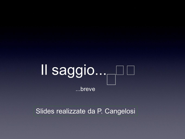 Il saggio......breve Slides realizzate da P. Cangelosi
