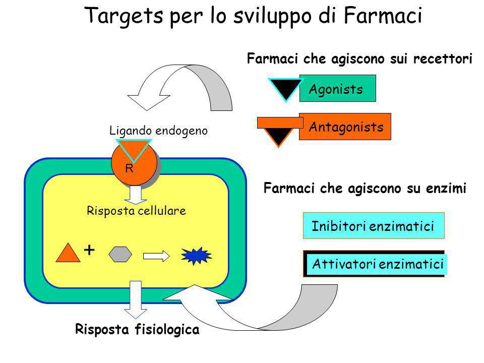 Targets per lo sviluppo di Farmaci R + Farmaci che agiscono sui recettori Agonists Antagonists Ligando endogeno + Farmaci che agiscono su enzimi Inibi