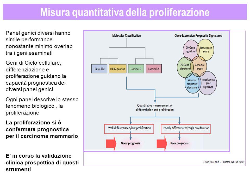 Misura quantitativa della proliferazione Panel genici diversi hanno simile performance nonostante minimo overlap tra i geni esaminati Geni di Ciclo ce