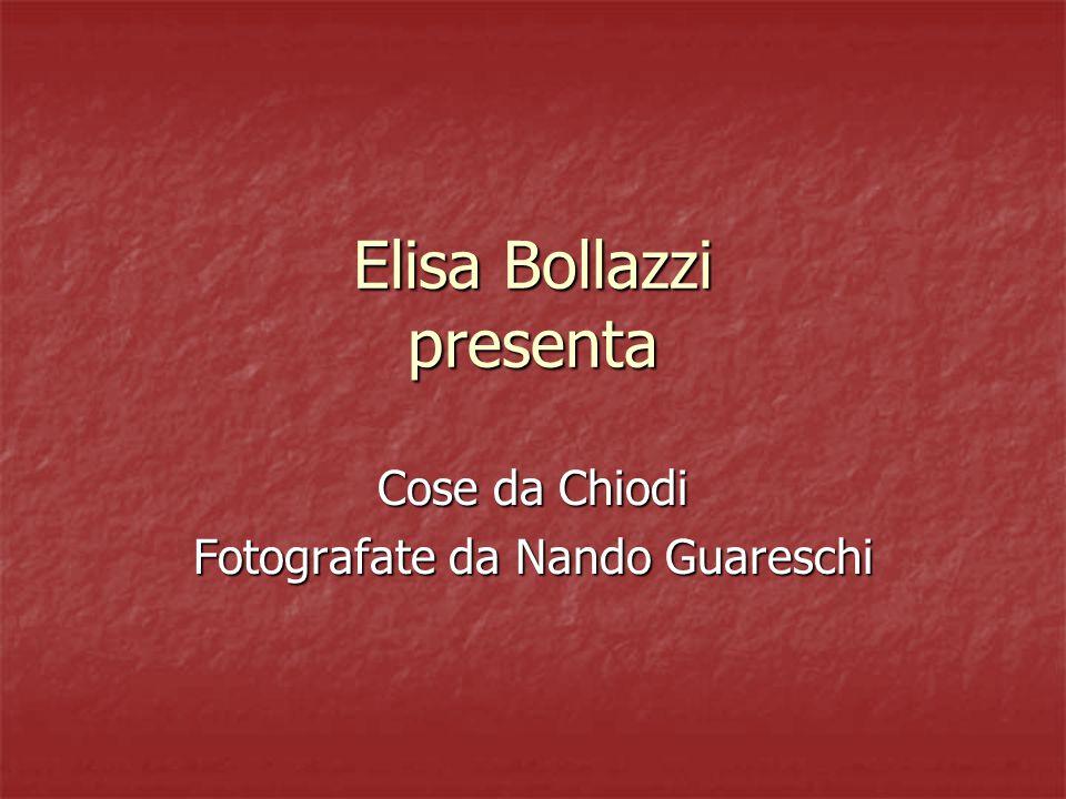 Elisa Bollazzi presenta Cose da Chiodi Fotografate da Nando Guareschi