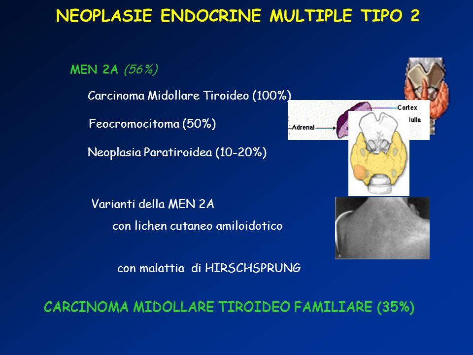 NEOPLASIE ENDOCRINE MULTIPLE TIPO 2 MEN 2B (9%) Carcinoma Midollare Tiroideo (100%) Feocromocitoma (50%) Habitus Marfanoide Ganglioneuromatosi intestinale e Neurinomi delle mucose Anomala mielinizzazione n.