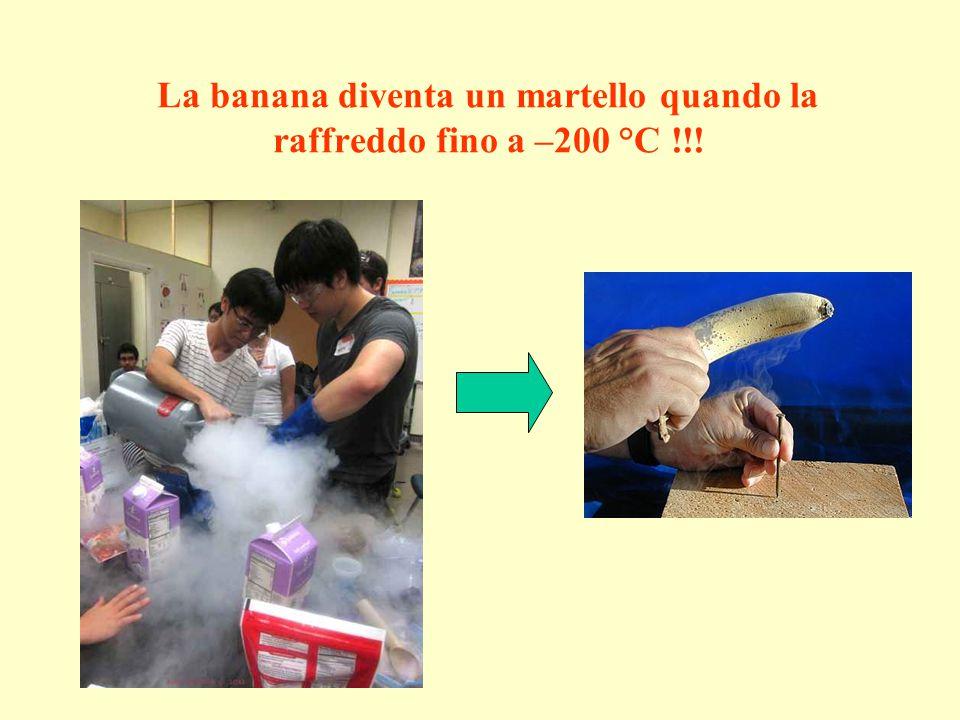 La banana diventa un martello quando la raffreddo fino a –200 °C !!!