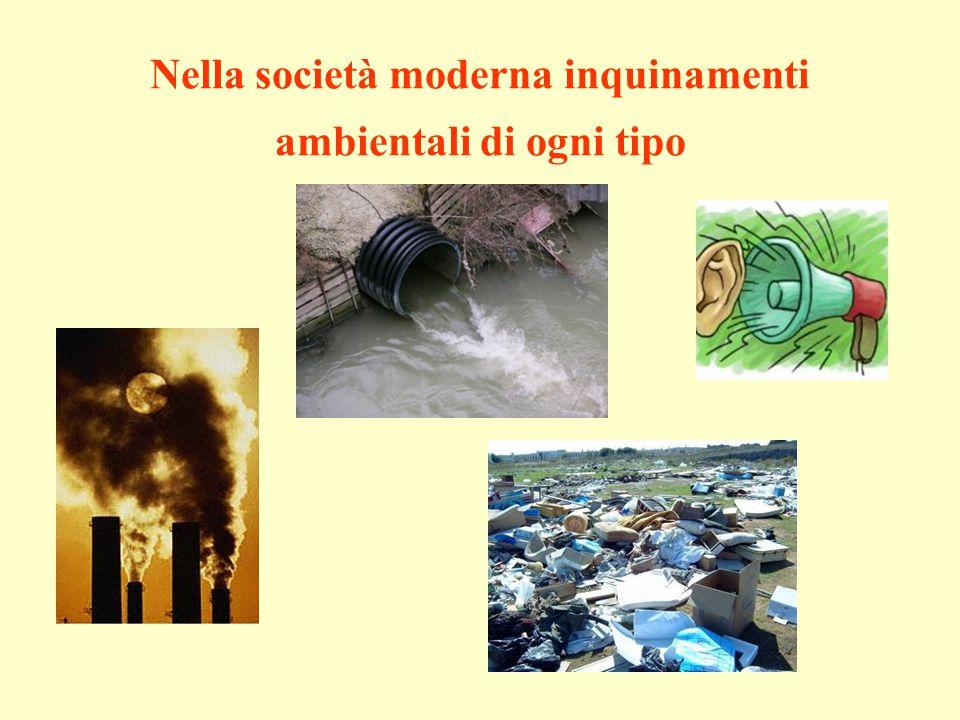 Nella società moderna inquinamenti ambientali di ogni tipo