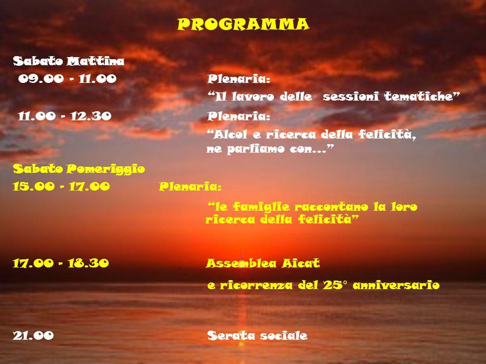 PROGRAMMA Sabato Mattina 09.00 - 11.00Plenaria: Il lavoro delle sessioni tematiche 11.00 - 12.30Plenaria: Alcol e ricerca della felicità, ne parliamo