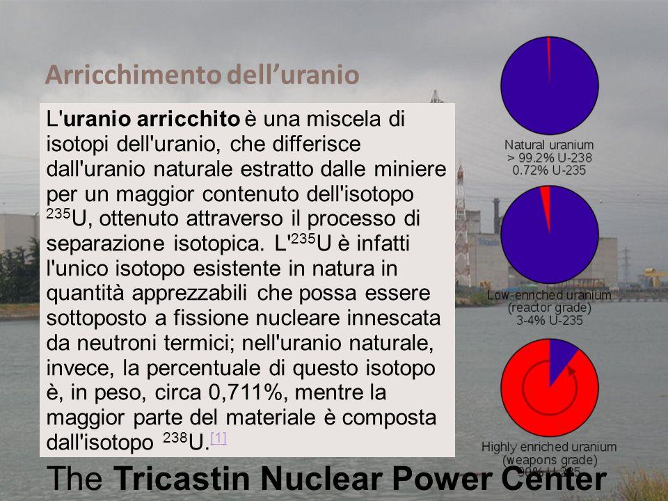 Ing. Domenico Prisinzano – CCEI di Palermo The Tricastin Nuclear Power Center L'uranio arricchito è una miscela di isotopi dell'uranio, che differisce